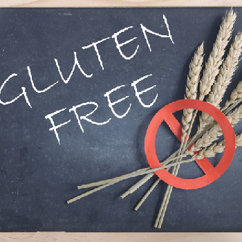 Gluten-Free Puppy Food in Alliston, Ontario