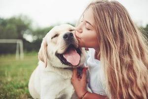 Benefits of Natural Dog Food